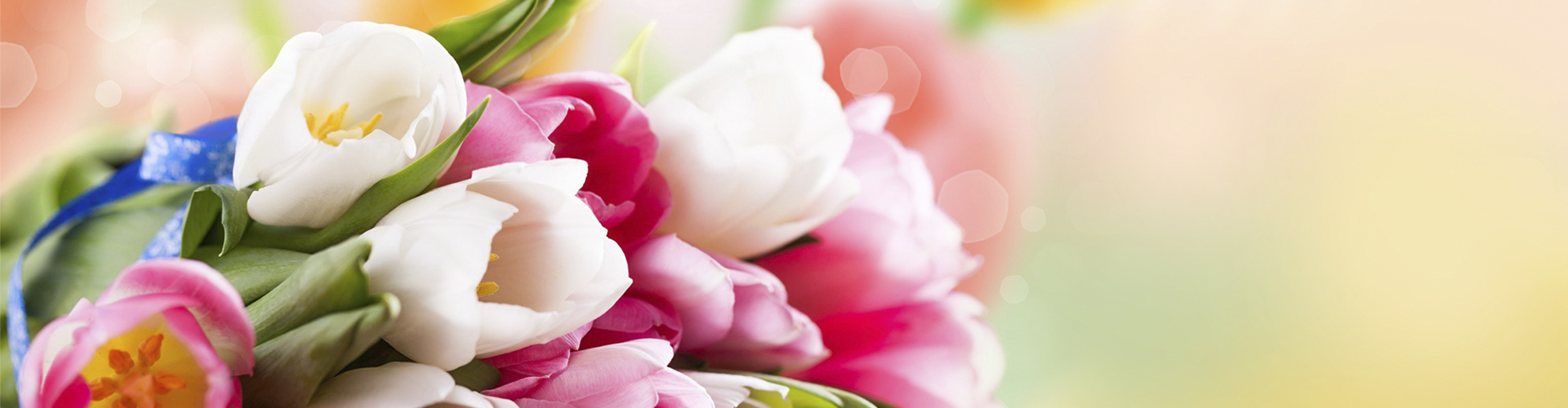kwiaty1